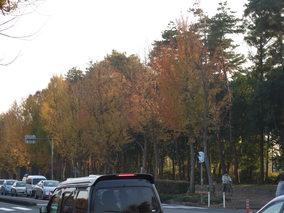 2006_1203bunsei0061