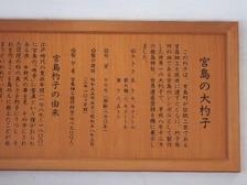 Miyasyakusi3
