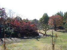 2009_1120park0007