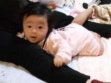 2010_1130mei0007