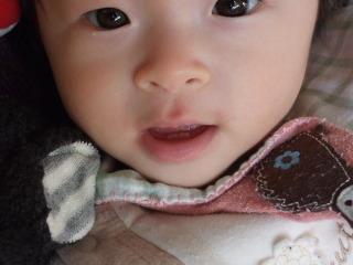 2010_1227mei0007