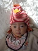 2011_0120mei0001