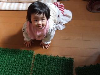 2011_0216mei0002