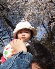 2011_0410mei0012