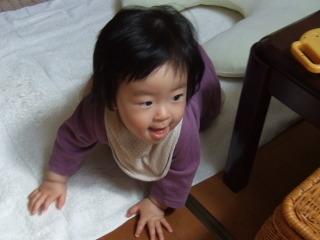 2011_0423mei0002