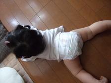 2011_0714mei0012