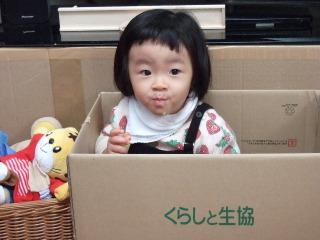 2011_1201mei0005