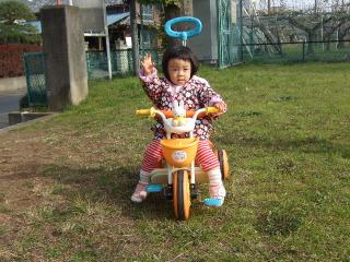 2011_1201mei0008