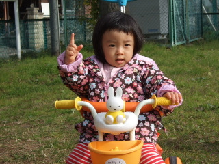 2011_1201mei0009
