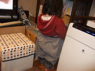2012_0223mei0007
