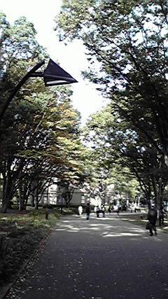 朝の上野公園